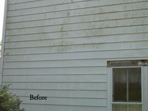 The Areas Where Shade Exists Frequently Begin To Show Mold And Mildew House Washing Periodically Improves Earance Greatly